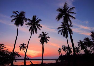 Sri Lanka e mare – Winter tour – Partenza 19 Novembre